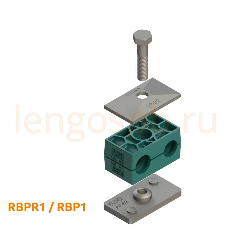RBPR1 RBP1
