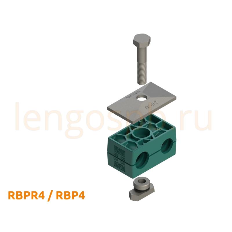 RBPR4 RBP4